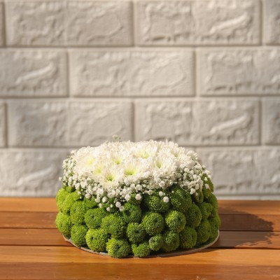 Green Button Daisies and White Chrysanthemum Flower Cake  arrangement
